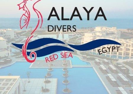 Dive base Alaya-Resort