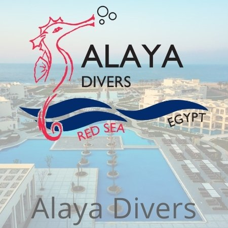 Dive base Alaya-Resort