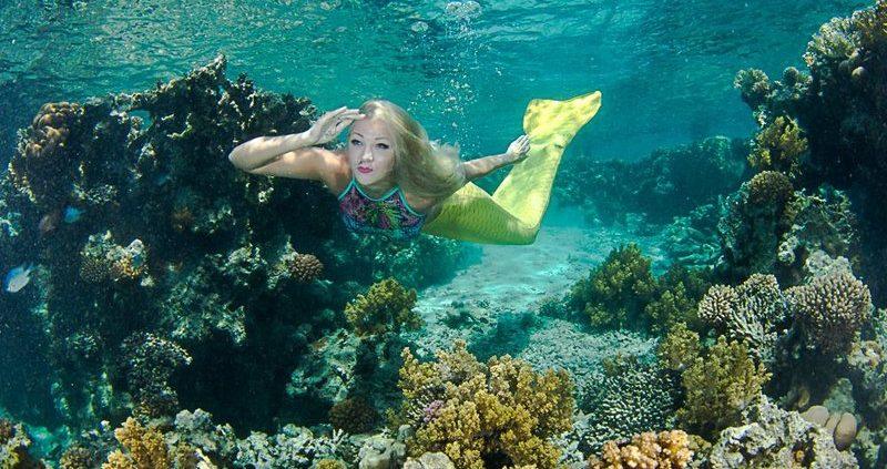 meeermaid_coraya-divers-2