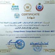 CDWS-Certificate